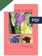 El Cultivo de Violetas ATC-IBARRA