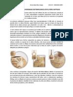 ANÁLISIS DE LA DIVERSIDAD ENTOMOLOGICA EN EL PERU ANTIGUO