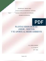 Plantas Siderurgicas y Su Aporte Al Medio Ambiente