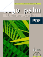 Promoting the Conservation and Use of Under Utilized and Neglected Crops. 13 - Sago Palm