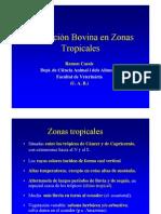 Prod Bovina en Climas Tropic Ales