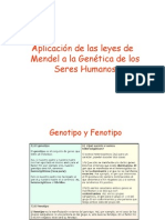 1. Genealogias