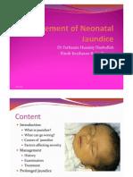 Management of Neonatal Jaundice