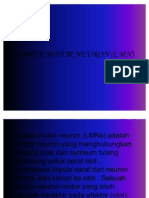 Lower Motor Neuron (LMN)