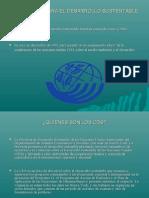 Comision Para El Desarrollo Sustentable 1