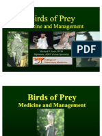 Birds of Prey Medicine and Mgmt