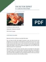 LA PÉTITION DE TON ESPRIT - Lucia Peña - 18 janvier 2012