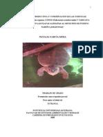 Tesis Tortugas Charapa Natalia1[1]