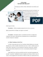 Estudo Da Citologia - Fran