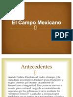 El campo mexicano