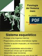 sistema-oseo-parte-1