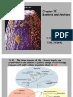 27 Prokaryotes Abbreviated 20120130