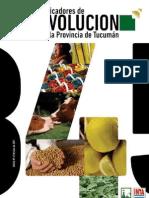 Indicadores de Evolución de la Provincia de Tucumán Nro 4 - Fundación del Tucumán