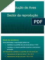 Aula 5 - Mono Gas Tri Cos Aves 2011 - Reprodutores