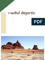 -Mediul-desertic ionut