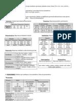 Guía (b) (PDF) Tipos de palabras