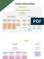 El sistema endocrino mapa conceptual