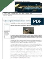Cultivo do cogumelo shiitake em substratos – cultivo axênico e pasteurização severa _ Comunidade CogumelosMágicos