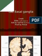 Lab Basal Ganglia