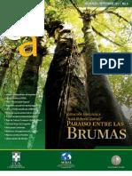 Boletín UCA - 6