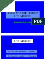 Ecografia I Trimestre RCT