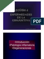Lecciones de Oftalmología- La conjuntiva. Conjuntivitis