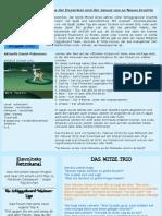 Schiggy Paper Ausgabe 2/ 2012 Magazin vom Schiggyboard (Februar)