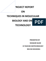 Techniques in Molecular Biology and Dna Technology
