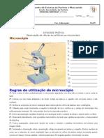 Protocolo Act Exp microscópio 7C-1
