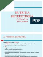 nutritia heterotrofa