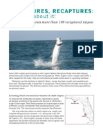 Tarpon Genetic Recapture Study 2011 Newsletter