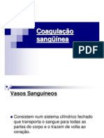 14 - Coagulacao Sanguinea PDF (1)