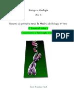 Molecula de DNA