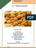 71560310 Prak Biokim Glikolisis Anaerob