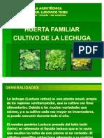 lechuga-101013082632-phpapp01