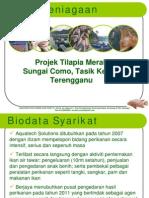 Projek Ikan Tilapia Sangkar Sg Como