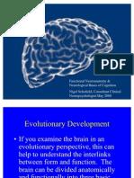 Anexo IV_Funcionamiento Cerebral