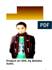 Project on XML by Botoho 2011
