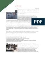 Elaboración del Pisco Peruano