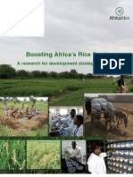 Boosting Africa's Rice Sector