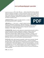Dictionar Termeni Psihopedagogie Speciala
