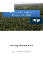 Oil Palm- Life Stages