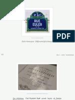Eulerhomogene-DGL
