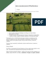 Diez grupos económicos concentran más de 198 mil hectáreas productivas