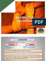 Alineacion Cultural