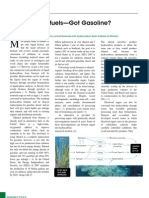 Science Article