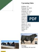 McCook Sale Catalog 2012