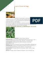 Recetas Orgánicas para el Control de Plagas