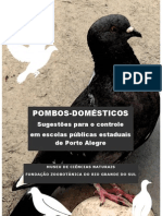 pombos-domesticos