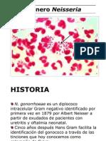Clase Neisseria 2009